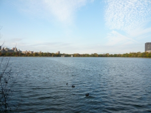 Central Park Reservoir, looking northwest from the south end
