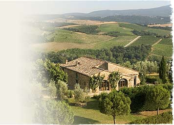 Culinary Institute of Tuscany