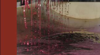Porter Creek Pinot Noir