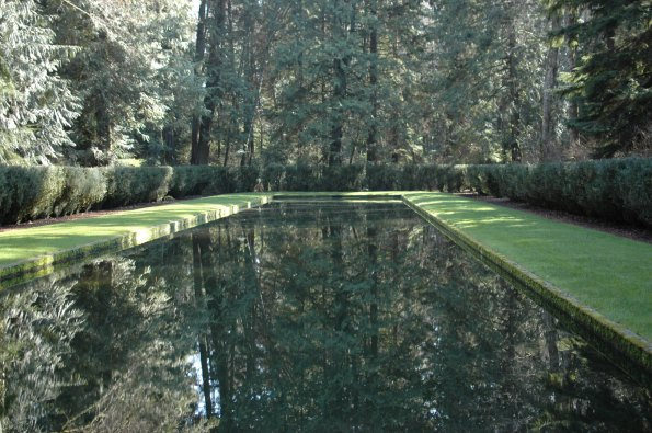 The Reflection Pool