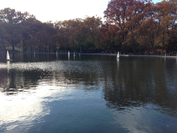 centralparksailing